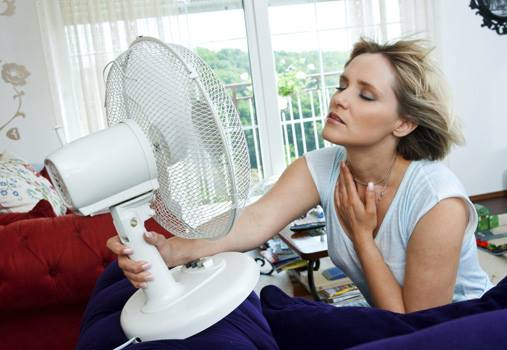 sofocos calores sudor menopausia234