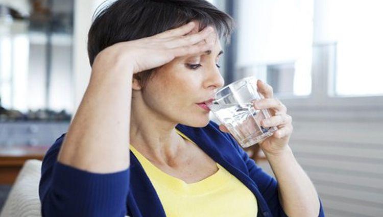 isoflavonas en la menopausia
