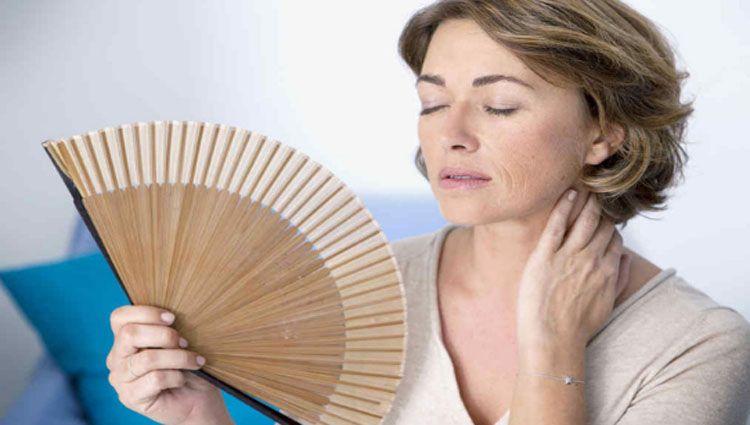 menopausia y las isoflavonas