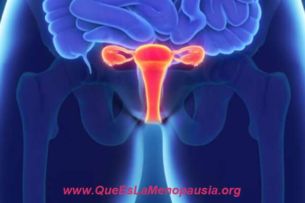 que es la atrofia vaginal y por que se origina