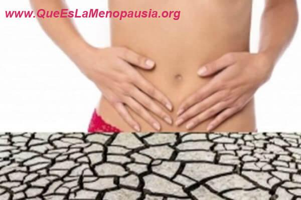 sintomas de la atrofia vaginal