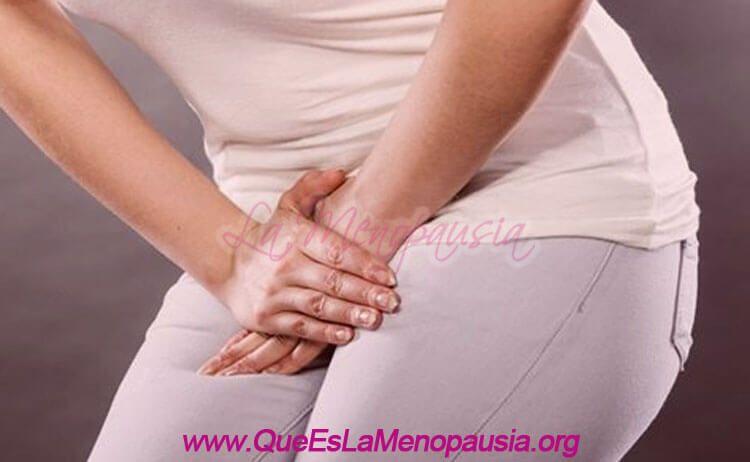 Problemas Ginecológicos en la Menopausia