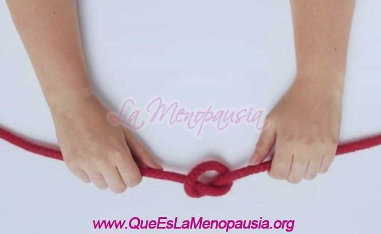 ✔ Salpingoclasia: ¿Puede Acelerar la Menopausia? Mitos y Verdades ™【2019】