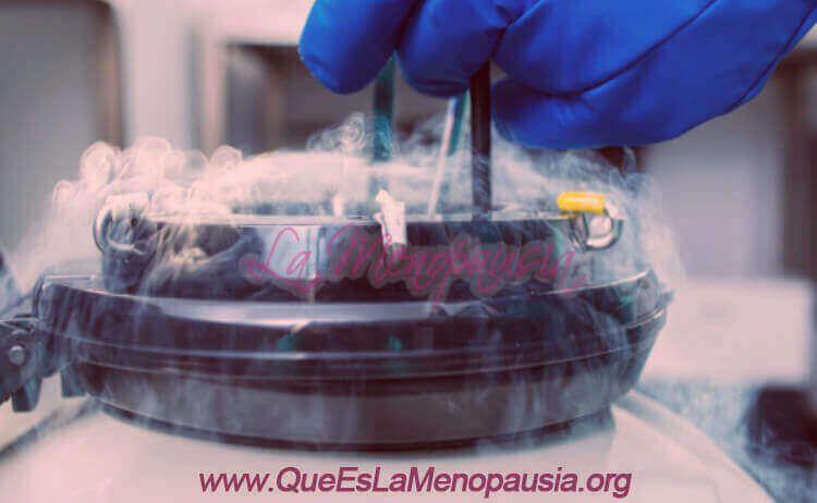 Óvulos o embriones congelados