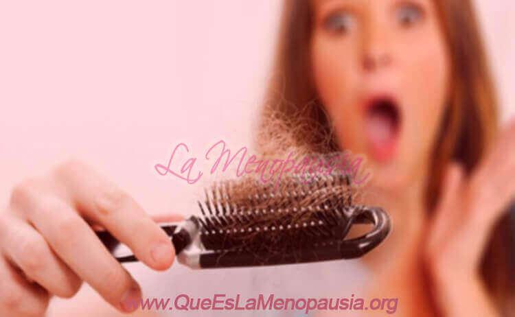 Fases de la Alopecia Femenina