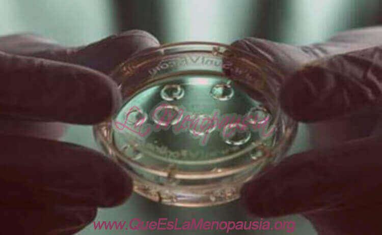 Ovodonación o donación de ovocitos