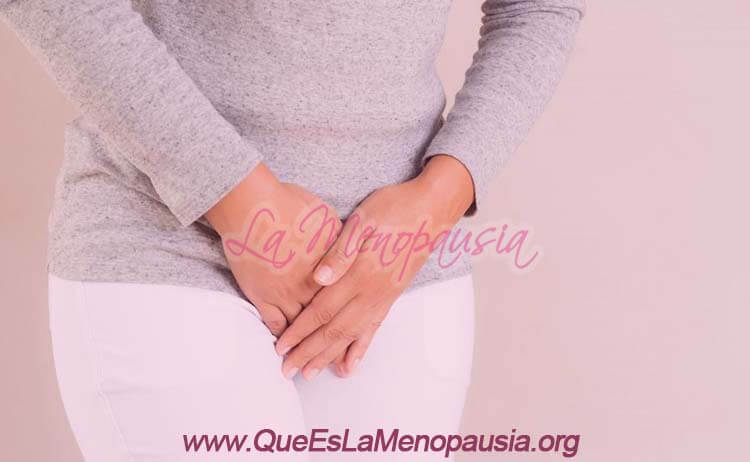 Conclusión: Menopausia y cirugía íntima